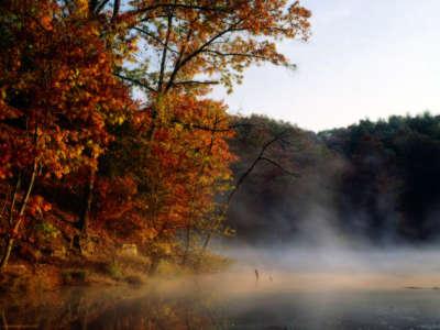 Mist And Autumn Indiana