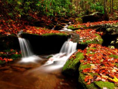 Wesser Creek In Autumn