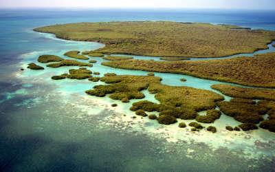Grassland Island