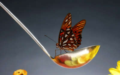 A Butterfly Landing On A Ladle