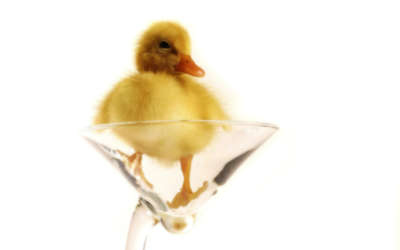 A Yellow Duck On A Glass