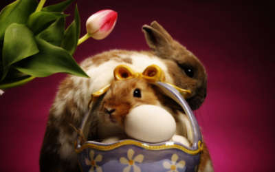 Two Rabbits And A Basket Of Eggs