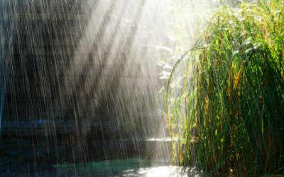 Raining Lake