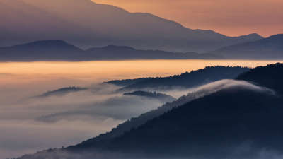 Fog - The View From Hill