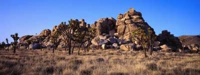 Hill and Desert
