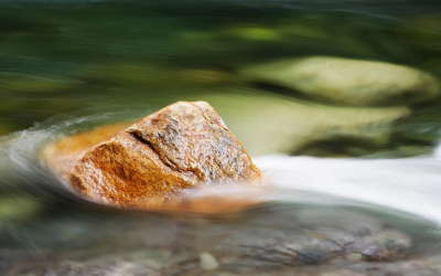 Rock in the Water