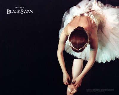 1280x1024 BlackSwan 2