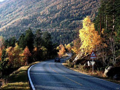 Road on an Autumn Day