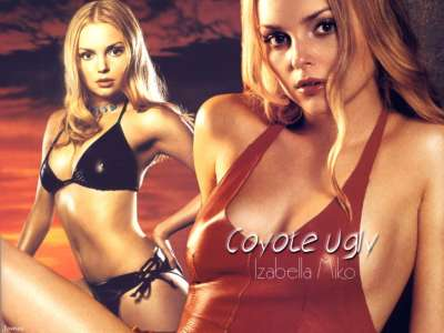 Coyote Ugly 002