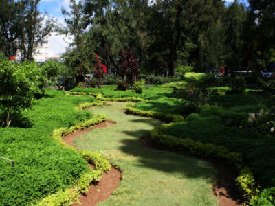 Flower Park