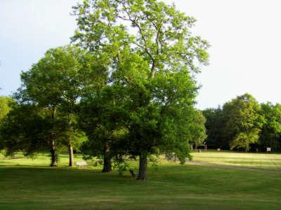 Maryland Farms Park