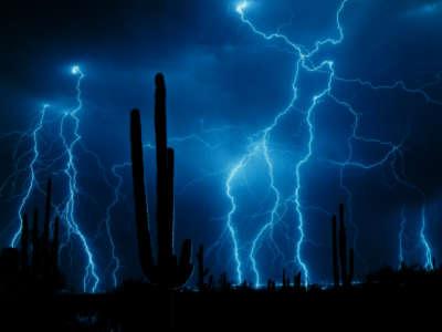 Lightening And Cactus