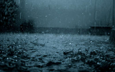 Rain Closeup