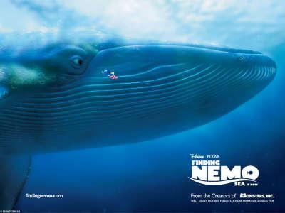 Finding Nemo 001