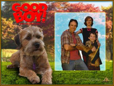 Good Boy 002