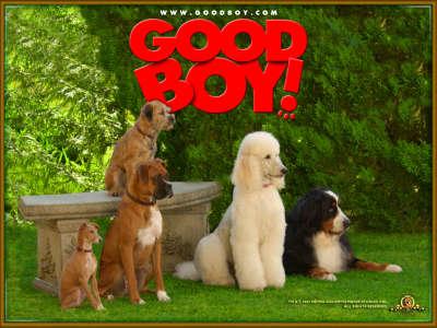 Good Boy 003