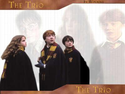 Harry Potter 017