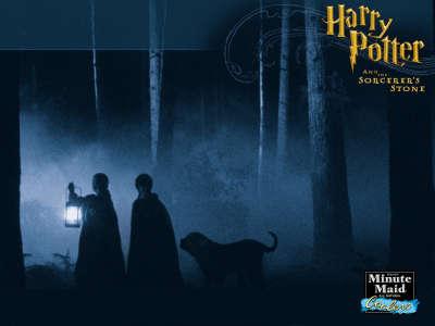 Harry Potter 018