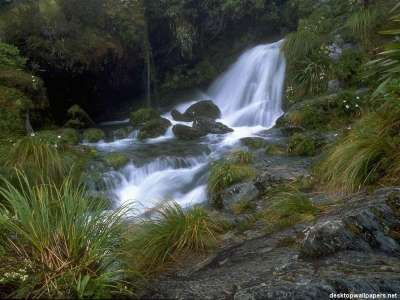 Nature Watterfall in green forrest