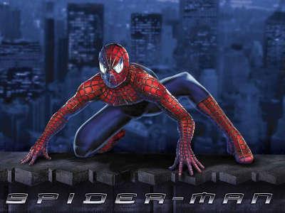 Spiderman 041