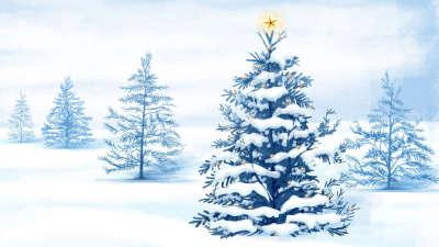 Winter Snow Nature006