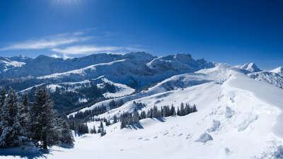 Winter Snow Nature036