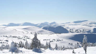 Winter Snow Nature058