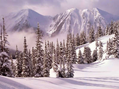 Winter Snow Nature061