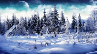 Winter Snow Nature092