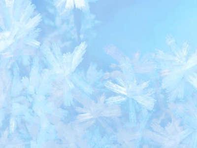 Winter Snow Nature098