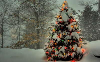 2 Merry Christmas
