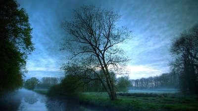 Beautiful Nature River
