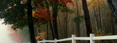 Autumn Nature Facebook Covers