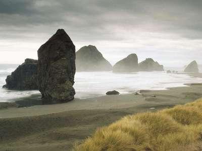 Fogy Beach