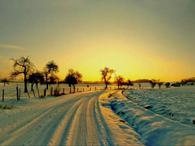 Winter Nature Sunset