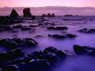 Rising Tide At Sunset New Zealand