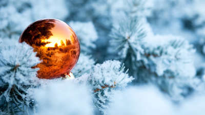 Winter Branches Snow Spruce Tree Ball Christmas Decorations Reflection