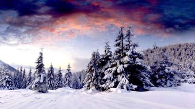 2 Winter Scenery