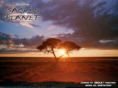 Sacred Planet 001