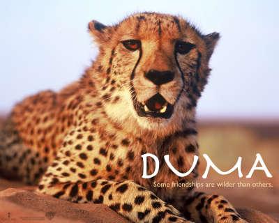 Duma 004
