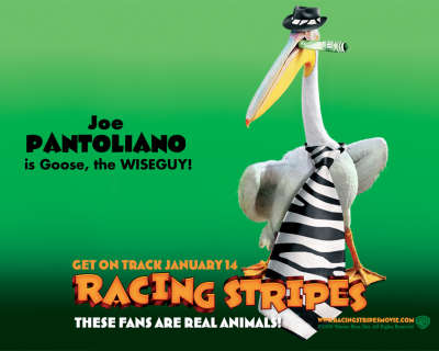 Racing Stripes 004