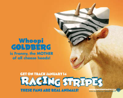 Racing Stripes 005